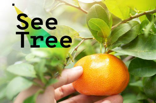 see tree